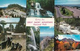 1 AK USA / Tennessee * Great-Smoky-Mountains-Nationalpark - UNESCO Weltnaturerbe * - Smokey Mountains