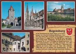 1 AK Germany / Bayern * Chronikkarte Von Regensburg Mit Wappen, Ostentor, Dom, Blick über Die Donau, Altes Rathaus * - Regensburg