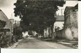70 - Haute Saone - Traves - Grande Rue - - Otros Municipios