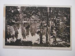 VEXAINCOURT Le Lac De Lamaix - CPA 88 VOSGES - Effet Miroir Sur Le Lac - Sonstige Gemeinden