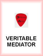 DEPECHE MODE MEDIATOR Medium PLECTRUM Guitar Pick - Accessori & Bustine