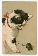 Gros Chat Noir Et Blanc Et La Petite Souris. Mouse. Cat. Carte Gaufrée. Embossed. - Cats