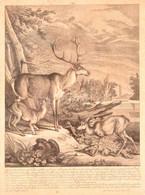 "1768 Martin Elias Ridinger (1730-1781): ""Dieser Hirsch Von 14 Enden,..."", Szarvasok, Rézmetszet, Papír, üvegezett Fa Ker - Gravures"