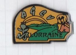 PINS REGION LORRAINE 5 A.G.C.V. - Administrations