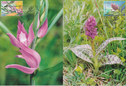 CARTE MAXIMUM - BIELORUSSIE - ORCHIDEES (2006) - Orchids