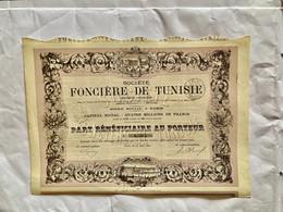 Sté  FONCIÈRE  De  TUNISIE  --------- Part  Bénéficiaire - Bank & Insurance