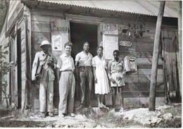 1:3  GUADELOUPE   LES MANGLES  ANNEES  1950  MUSEE DE LA POSTE - Otros
