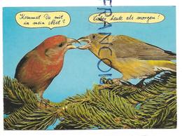 "Deux Oiseaux Se Bécotent:"" Kommst Du Mit In Mein Nest? / Viens-tu Dans Mon Nid?"" - Humour"