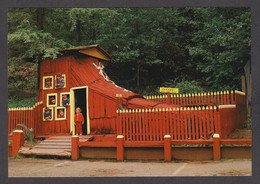 114976/ CALIFORNIA, Redwood National And State Parks, The Redwood Shoe, Tree House Park - Sin Clasificación