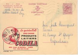 Ganzsache Publibel 2177 - Codila Milchprodukte Othee Ans Krug Kopftuch Zopf Sennerin Berge Bergblumen Jupille-sur-Meuse - Publibels