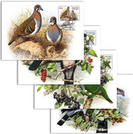 Australia 2021 Set 4 MC Maximum Card  Doves And Pigeons Birds Bird Oiseaux Oiseau - Columbiformes