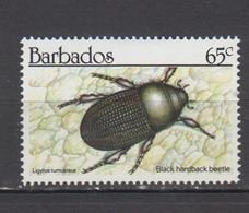 BARBADE * YT N° 794 - Barbados (1966-...)