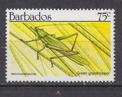 BARBADE * YT N° 795 - Barbados (1966-...)