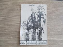 CPA PHOTO PUBLICITE SUPERPHOSPHATE MAIS - Reclame