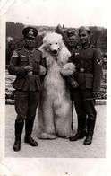 Carte Photo Originale Eisbär, Déguisement D'Ours Blanc Polaire & Soldats Allemands En Uniformes Du III Reich Vers 1940 - Anonymous Persons