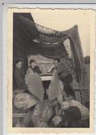 (F1606) Orig. Foto Sizilien, Getarnter Unterstand, Kakteen, 1941 - Guerra, Militari