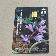 CYPRUS-(1400CY-A)-Cyprian Glory Of The Snow-(183)-(5£)-(6/2000)-(1400CY03929070)-used Card+1card Prepiad Free - Cyprus
