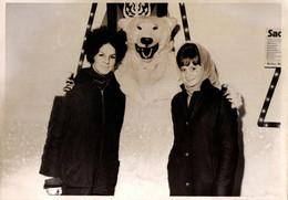 Photo Couleur Originale Eisbär, Déguisement D'Ours Blanc Polaire Et Son Duo De Pin-Up & Toque Noire Vers 1960 - Anonymous Persons