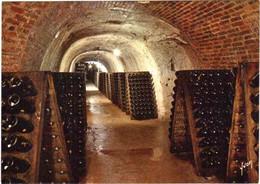 CPM 51 (Marne) Epernay - Champagne Perrier-Jouët - Vue Des Caves. Bouteilles En Cours De Remuage Sur Pupitre - Reclame