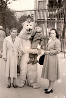 Photo Originale Eisbär, Déguisement D'Ours Blanc Polaire Avec Femmes & Enfant Sur Berlin Vers 1950/60 - Anonymous Persons