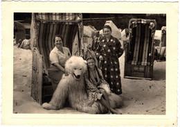 Photo Originale Eisbär, Déguisement D'Ours Blanc Polaire Avec 3 Génération De Son Fan Club à La Plage Vers 1940 - Anonymous Persons