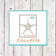 Grenada 2015 Marine Life  Starfish - Grenada (1974-...)