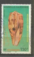 974 Coquillage        (clasyveroug13) - Usados