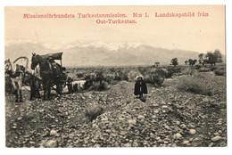 1910s TURKESTAN Landscape East Turkestan W/ Horse Cart Swedish Mission Station Postcard Cpa China Chine Cheval No 1 - Cina