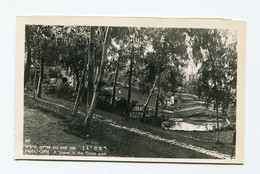 Israel : RAMAT GAN, A Corner In The Krinizi Park, Tel Aviv - Israele