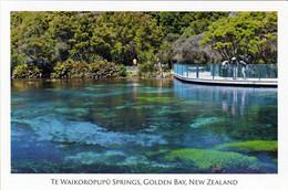 1 AK Neuseeland * Die Te Waikoropupū Springs - (eine Der Klarsten Quellen Weltweit) An Der Küste Der Golden Bay Südinsel - Neuseeland