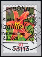 3516 Blume Taglilie, Selbstklebend, EV-O BONN 2.1.2020 - Ohne Zuordnung
