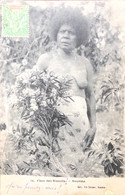 Fleur Des Niaoulis Nouméa - Nieuw-Caledonië