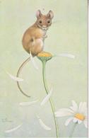 """UK - Artist Signed  Noel Hopking - Mouse """"She Loves Me"""" - Andere"""