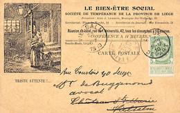 LIEGE - Le Bien-Etre Social, Société De Tempérance De La Province De Liège - Liege