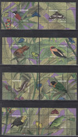 2019 Surinam Suriname Flora & Fauna Birds Butterflies Frogs Lizards  Complete Set Of 16 Sheets MNH - Surinam