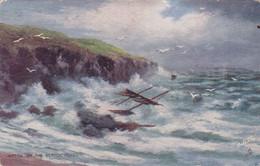 "QN - Tuck's Post Card - ""Oilfacsim"" - Rough Seas, Scotch Coast - Ericx In The Scotch Coast  (neuf) - Peintures & Tableaux"