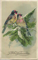 Fröhliche Weihnachten - Vögel - Prägedruck Gel. 1908 - Otros