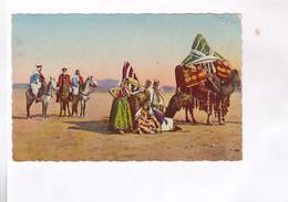 CPA  SCENES ET TYPES  D AFRIQUE DU NORD, CARAVANE INDIGENE DANS LE SUD - Scènes & Types