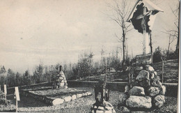 "Cartolina - Postcard / Non  Viaggiata - Unsent /  Cimitero Militare Italiano  "" Gloria D'Armi "" Tonezza. - Cementerios De Los Caídos De Guerra"