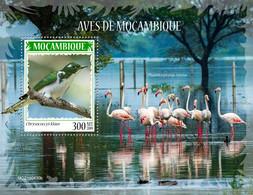 MOZAMBIQUE 2019 - Flamingo - YT BF1487, CV=15 € - Flamingo