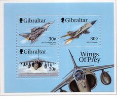 PIA - 1999 - Aerei Della Reale Forza Aerea -  (Yv. Bf 36) - Gibilterra