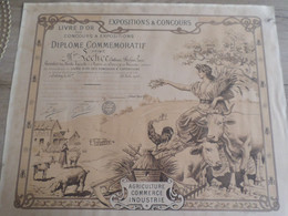 RF CONCOURS ET EXPOSITIONS DIPLOME COMMEMORATIF MAIRE DE BARZY -EN - THIERACHE (AISNE)  1910 - Diplômes & Bulletins Scolaires
