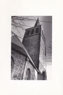 Lessines, Eglise Saint Pierre - Lessen
