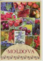 2021 , Moldova ,  UN: 2021 - International Year Of Fruits And Vegetables - Moldavia