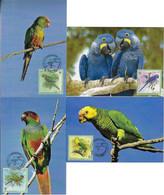 Brazil 2001 Complete Series 4 Maximum Card Stamp RHM-C-2382/2385Brazilian Bird Macaw Parrot Fauna Animal - Pappagalli & Tropicali