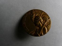 BROCHE ANCIENNE EN BRONZE DORE - SIGNE WILLETTE :  Journée Du Puy De Dôme 1916 - Autres