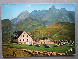 CP 64 BEOST  - LE Refuge Du Col D'AUBISQUE Alt 1708 M. Lespâturages Au Sommer Troupeau De Moutons Voitures 1975 - Sonstige Gemeinden