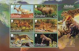 Gibraltar Hb - Gibilterra