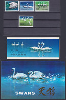 """CHINA 1983, """"Swans"""", Serie T.83 + Stamp Booklet SB10 Unmounted Mint + Serie FD-canc. In Folder - Collections, Lots & Series"""