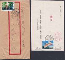 """CHINA 1984, 2 Covers, Domestic Mailing, Stamps Of Issue """"Nipponia Ibis"""" - Eilpost"""